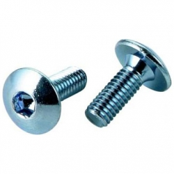 DOME SCREW
